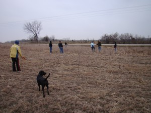 Measuring plots