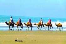 camels beach