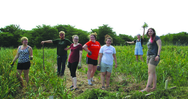 Students visited Lutheran Services in Iowa's Global Greens garden, which helps refugees reconnect with the land.