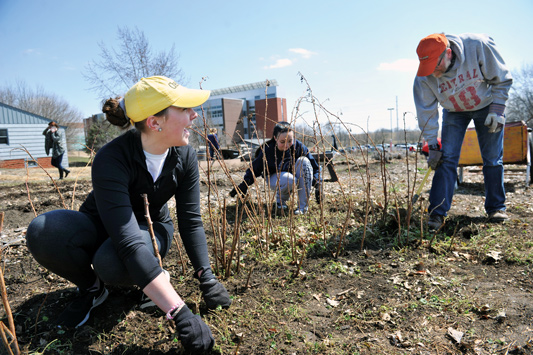 Central students engagine in service projects on Service Day 2018