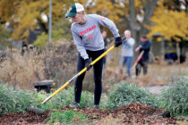 Central student participating in Service Day.
